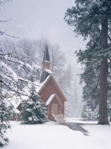Chapel and Pine Trees Covered in Snow by Winter Snowstorm by Jeff Foott