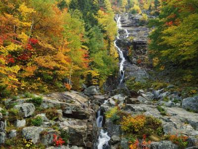 Usa, New Hampshire, White Mountains National Forest