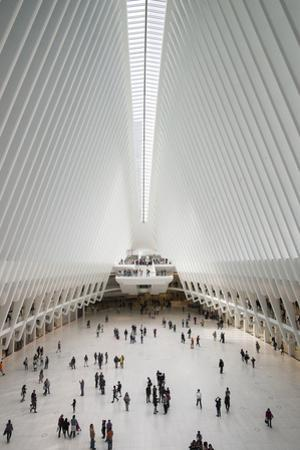 The Oculus transportation center at the World Trade Center. by Jeff Mauritzen