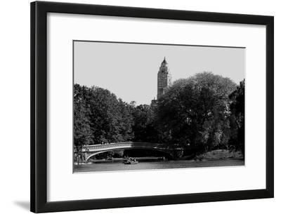 Central Park Bridge, NYC II