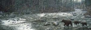 Cool Creek by Jeff Tift