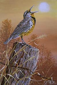 Meadowlark Painting by Jeff Tift