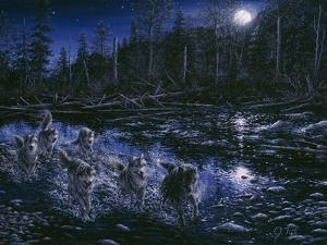 Midnight Pursuit by Jeff Tift