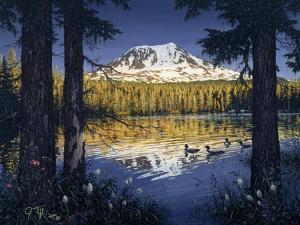 Mt Adams by Jeff Tift