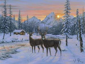 Whitetail and Cabin by Jeff Tift