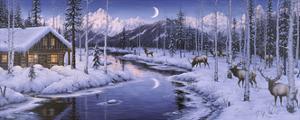 Winter Silence by Jeff Tift