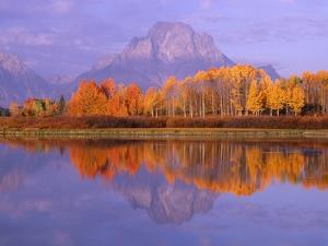 Oxbow Bend Reflecting Mount Moran by Jeff Vanuga
