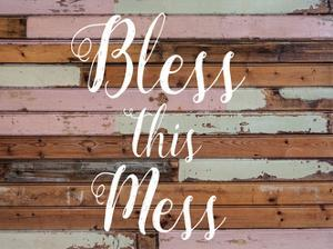 Bless This Mess Barnwood by Jelena Matic