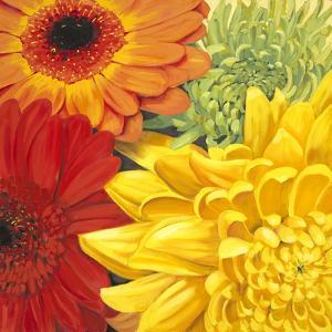 Brights by Jenaya Jackson