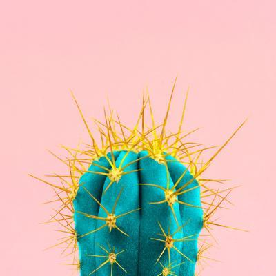 Blue Neon Cactus on A Pink Background
