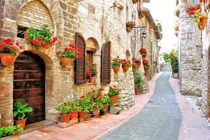 Flower Filled Italian Lane by Jeni Foto