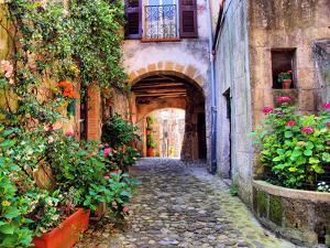 Tuscan Lane by Jeni Foto