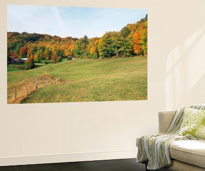 Jenne Farm in Autumn, Reading, Vermont, USA-Walter Bibikow-Wall Mural