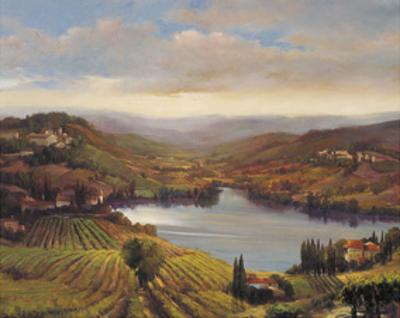 Vineyard View I