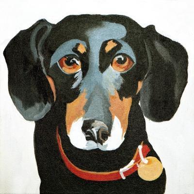 Buster, 2012 by Jennifer Abbott