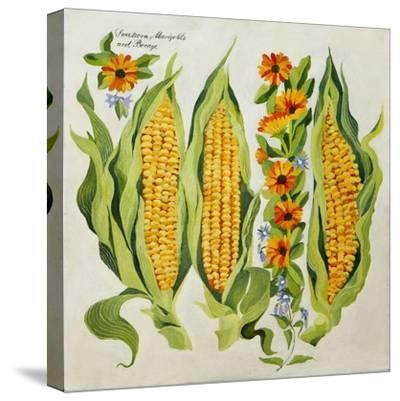 Corn and Marrow Flowers, 2014