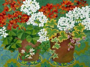 Red and White Geraniums in Pots, 2013 by Jennifer Abbott