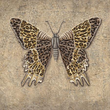 jennifer-brice-leopard-butterfly