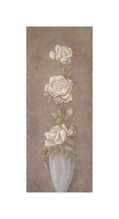 Splendid Blossoms