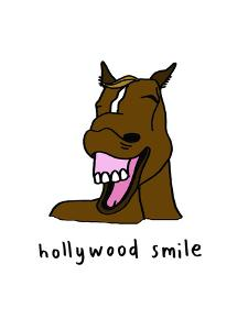 Hollywood Smile by Jennifer Camilleri