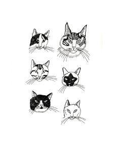 Lots of Pussy by Jennifer Camilleri