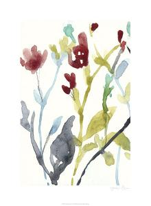 Abundant Flowers I by Jennifer Goldberger