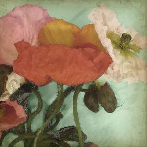 Aquatic Poppies II by Jennifer Goldberger