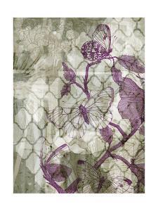 Arabesque Butterflies IV by Jennifer Goldberger