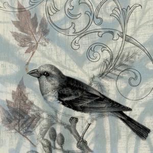 Autumn Songbird II by Jennifer Goldberger