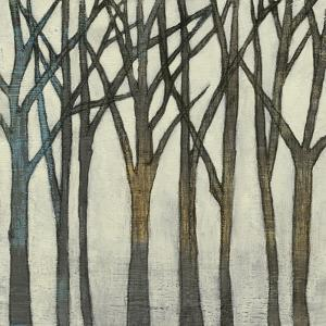 Birch Line II by Jennifer Goldberger
