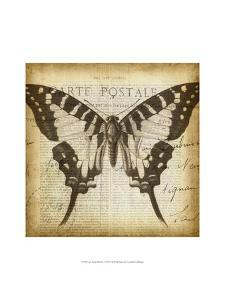 Carte Postale Butterfly I by Jennifer Goldberger