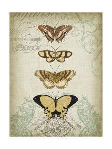Cartouche and Butterflies II by Jennifer Goldberger