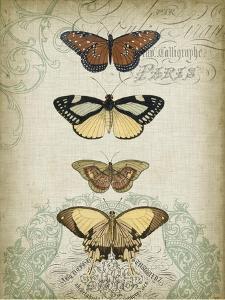 Cartouche & Butterflies I by Jennifer Goldberger