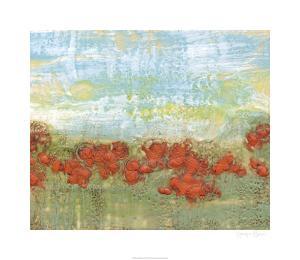 Coral Poppies II by Jennifer Goldberger