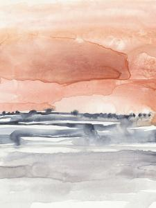 Coral Sky II by Jennifer Goldberger