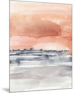 Coral Sky II by Jennifer Goldberger