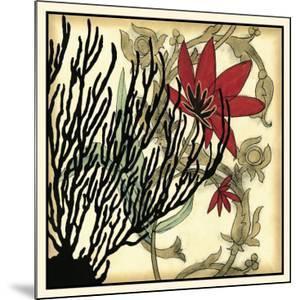 Coral Tapestry IV by Jennifer Goldberger