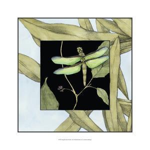 Dragonfly Inset III by Jennifer Goldberger