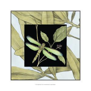 Dragonfly Inset V by Jennifer Goldberger