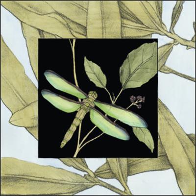 Dragonfly Inset V