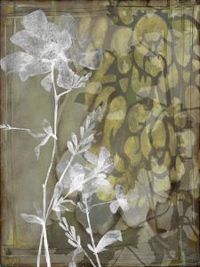 Dusty Garden II by Jennifer Goldberger