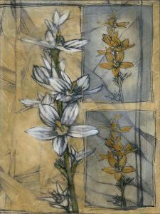 Embellished Wildflower Collage I by Jennifer Goldberger