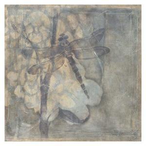 Ethereal Wings III by Jennifer Goldberger