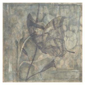 Ethereal Wings V by Jennifer Goldberger