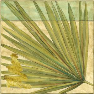 Fan Palm I by Jennifer Goldberger