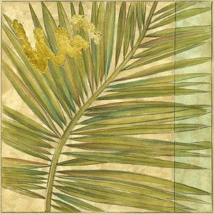 Fan Palm II by Jennifer Goldberger