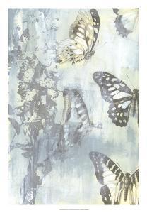 Flutter II by Jennifer Goldberger