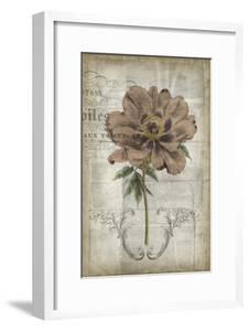 French Floral II by Jennifer Goldberger