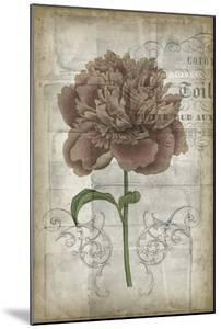French Floral IV by Jennifer Goldberger