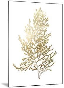 Gold Foil Algae IV by Jennifer Goldberger